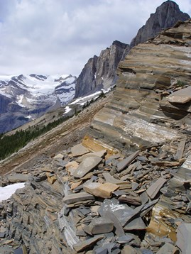 Mt. Wapta and Burgess Shale